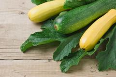 zucchini with leaves - stock photo
