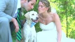 Bride Groom and Dog Portraits Stock Footage