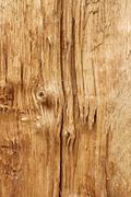 New wooden broken log Stock Photos