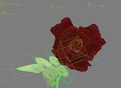 3d model of rose for animation