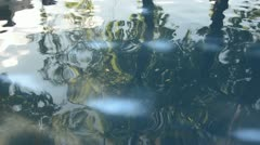 Abstract pond water background Stock Footage