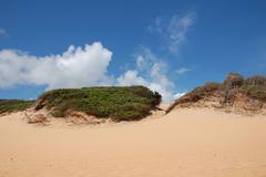 Dunes, Brazil Stock Photos