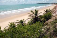 Pipa beach, Brazil Stock Photos