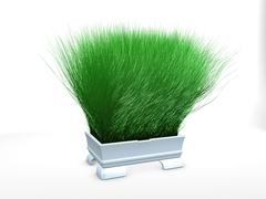Stock Illustration of grass pot2