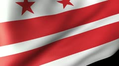 District of Columbia Flag Waving Stock Footage