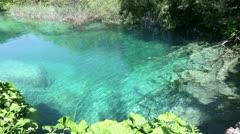 Summer azure  limpid  transparent lake (Plitvice, Croatia) - stock footage