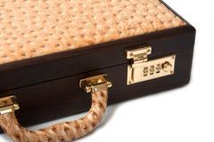 Walnut ostrich brief case Stock Photos