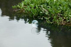 Conceptual soap bubbles Stock Photos