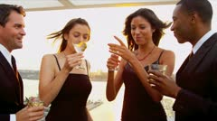 Group of multi ethnic friends chilling and drinking at cocktail party   Stock Footage