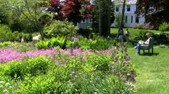 Wild flower garden Thornton Burgess Green Briar Sandwich Cape Cod Stock Footage