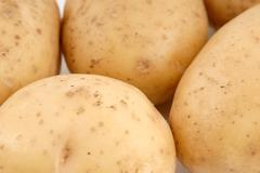 Stock Photo of potatos