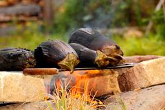 campfire barbecue - stock photo