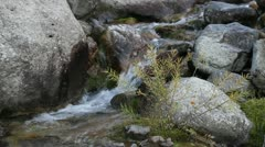 Streamlet among stones Stock Footage