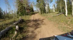 ATV riding along mountain forest trail HD 013 Stock Footage