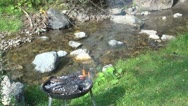 Stock Video Footage of Barbecue Fire, Grill Fire Near River in the Mountain