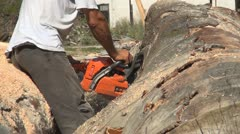 Woodcutter in the Mountain, Forest Cutting, Wood Industry - stock footage