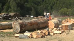 Woodcutter in the Mountain,  Worker Cutting Wood with a Chainsaw Stock Footage