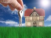 Stock Illustration of nice house on grass