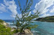 Cove bay, barbados Stock Photos