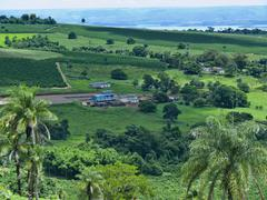 Coffee farm near ibiraci town, minas gerais, brazil Stock Photos