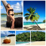 Stock Photo of caribbean collage