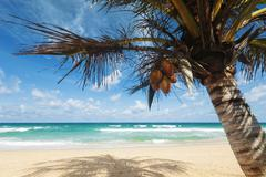 Tropical beach scenery Stock Photos