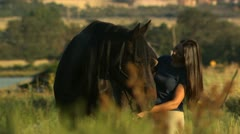 Woman brushing a horse Stock Footage