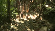 Stock Video Footage of amputee hiking through the jungle