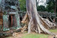 Stock Photo of Ta Prohm temple in Cambodia