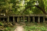 Stock Photo of Ancient ruins in the jungle