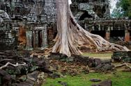 Stock Photo of Ta Prohm temple ruins