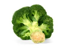 broccoli floret isolated on a white background - stock photo