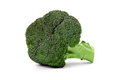 broccoli floret - stock photo