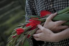 Woman holding scarlet red Gladioli in arms Stock Photos