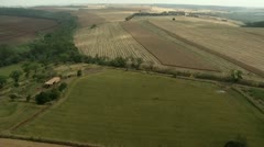 Aerial view of agricultural area and trees Stock Footage