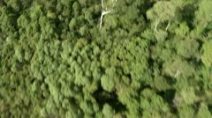 Aerial view of a rainforest Stock Footage