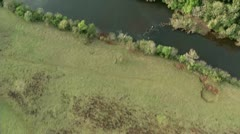 Aerial top view of river, forest and agricultural area Stock Footage