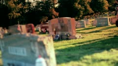 Woman Visits Grave in Cemetery 2657 Stock Footage