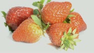 Stock Video Footage of strawberry