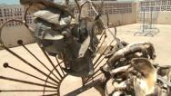 Shark jaws drying on a house roof - Sudan, shark finning Stock Footage