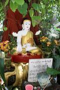 shrine with buddha - stock photo