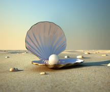 Seashell Stock Illustration