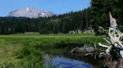 Lassen 04 HDR Kings Creek Meadows Stock Footage