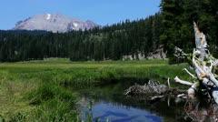 Lassen 04 HDR Kings Creek Meadows - stock footage