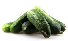 fresh cucumbers - stock photo