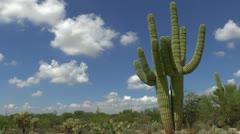 Postcard Tucson Arizona Time Lapse Stock Footage