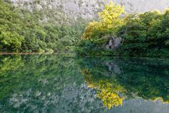 Stock Photo of beautiful reflection on the river near split, croatia