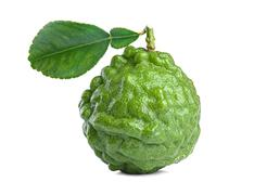 kaffir lime - stock photo