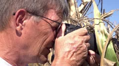 Man taking pictures in corn field Stock Footage