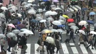 Stock Video Footage of Fast motion of Shibuya pedestrian crossing,car traffic in rainy day,Tokyo,Japan